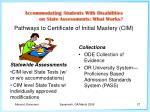 pathways to certificate of initial mastery cim