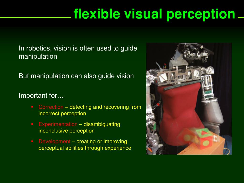 flexible visual perception