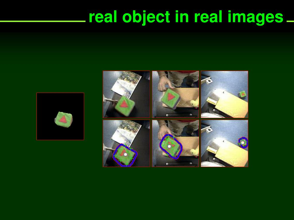 real object in real images