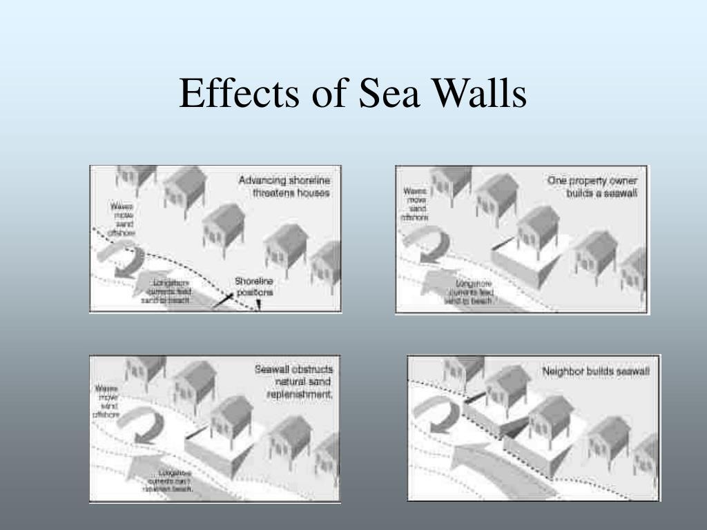 Effects of Sea Walls