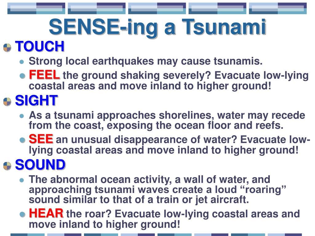 SENSE-ing a Tsunami