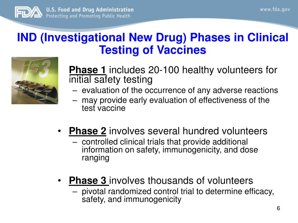 IND (Investigational New Drug) Phases in Clinical Testing of Vaccines