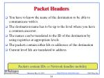 packet headers