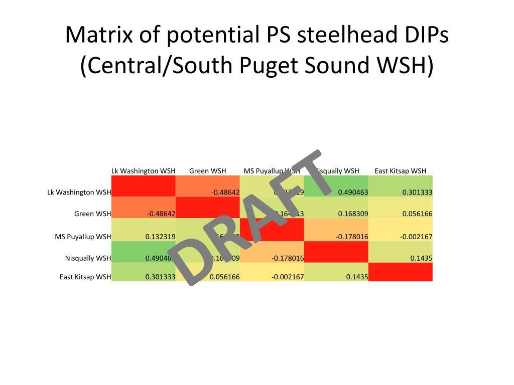 Matrix of potential PS steelhead DIPs