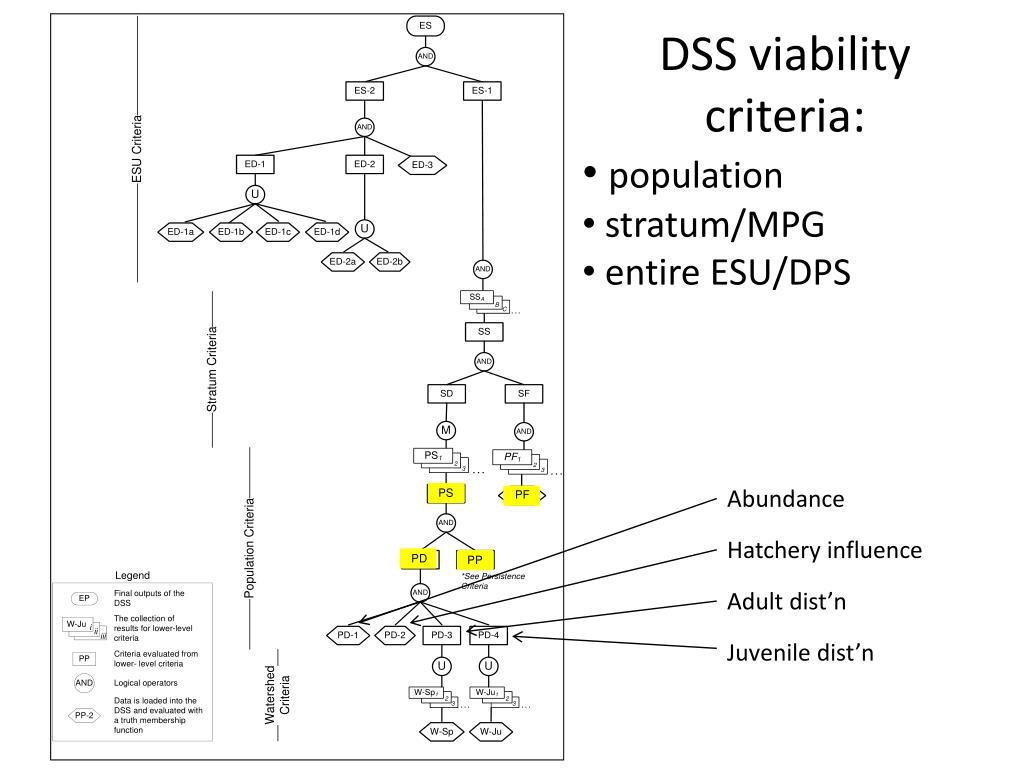 DSS viability criteria: