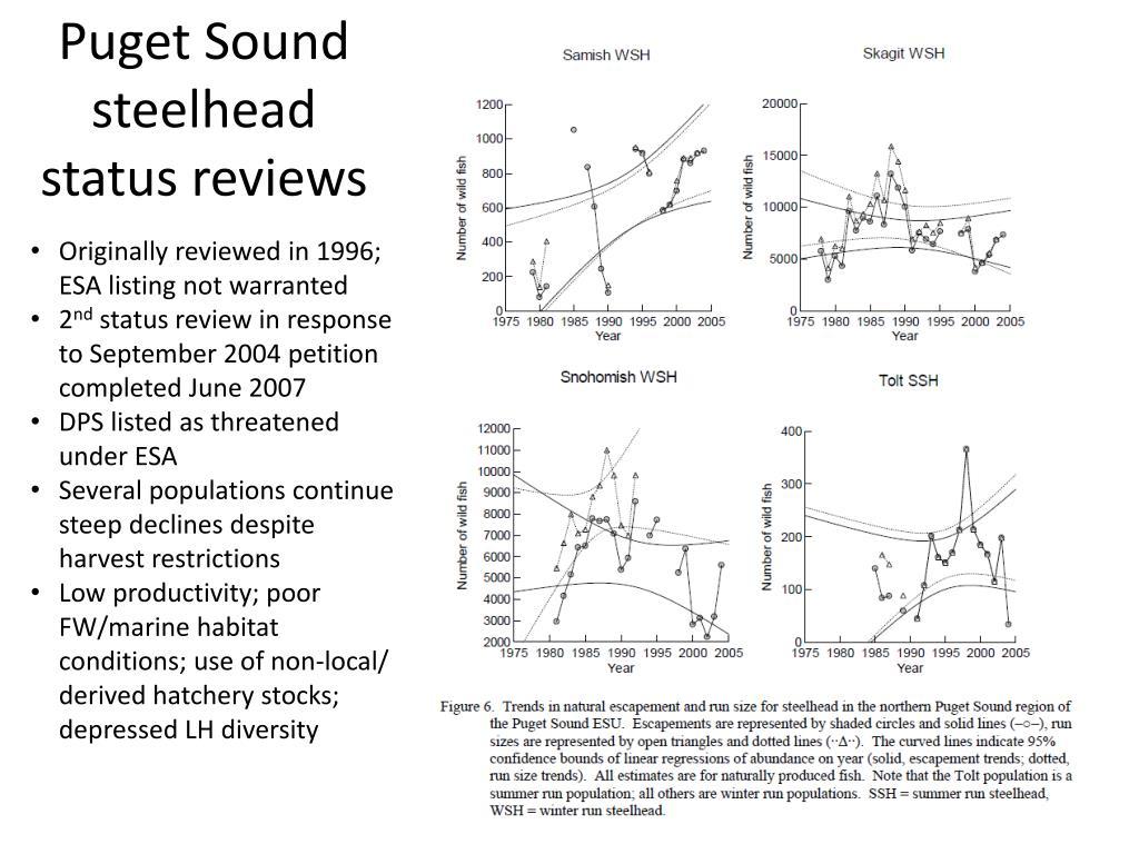 Puget Sound steelhead status reviews