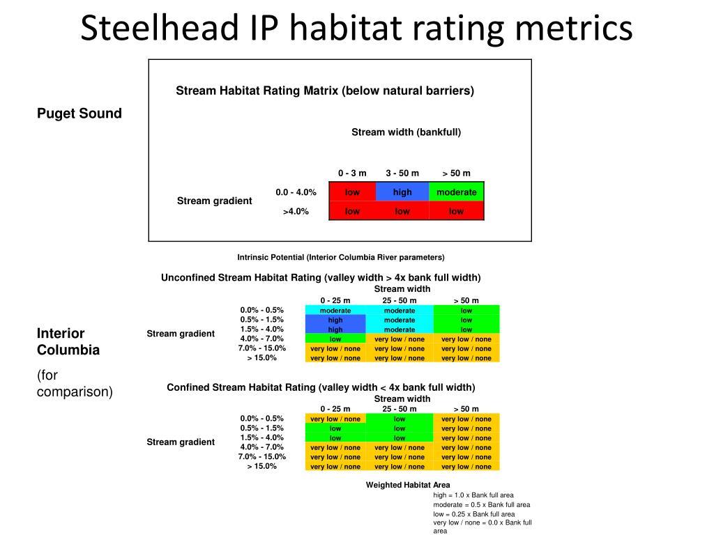 Steelhead IP habitat rating metrics