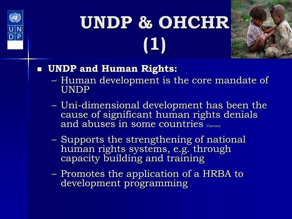 UNDP & OHCHR