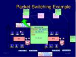 packet switching example18