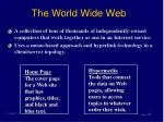the world wide web31