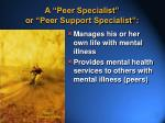 a peer specialist or peer support specialist