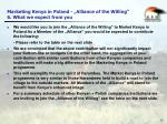 marketing kenya in poland alliance of the willing 6 what we expect from you