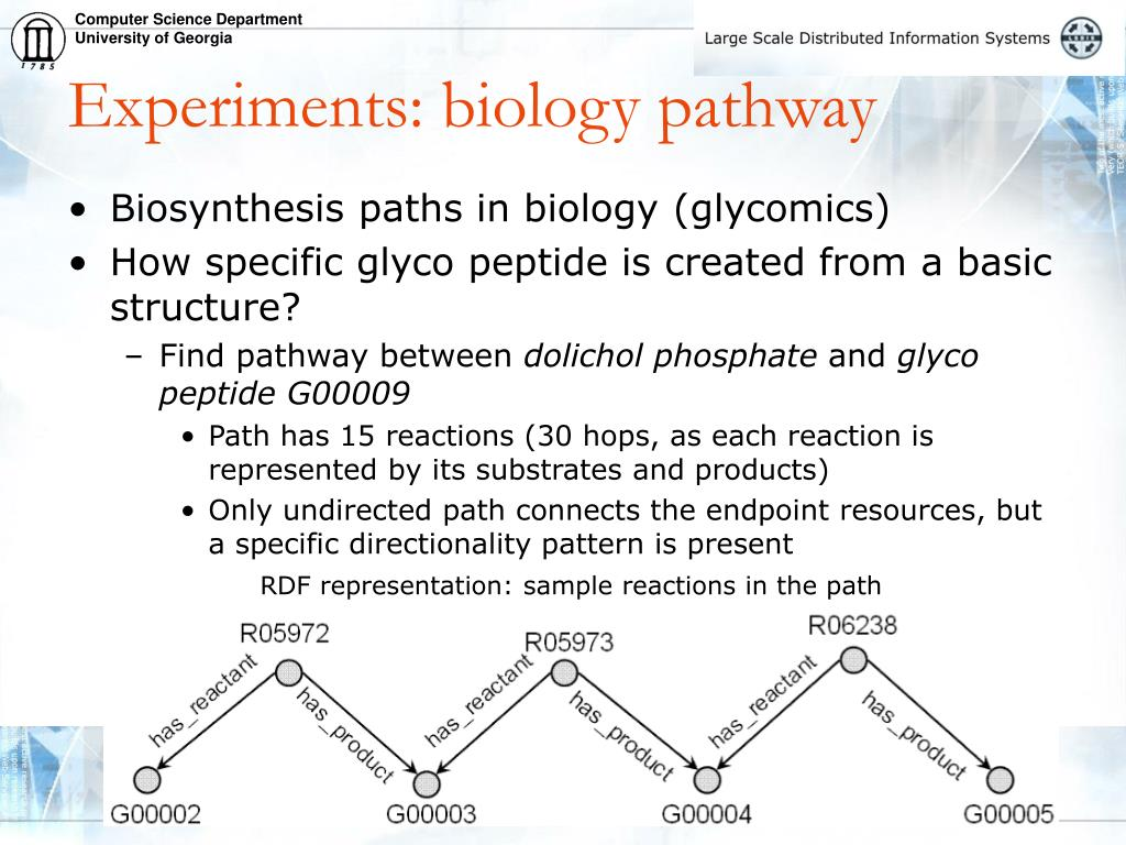 Experiments: biology pathway