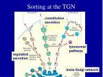 sorting at the tgn