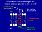 three classes of membrane proteins transmembrane proteins a type of imp