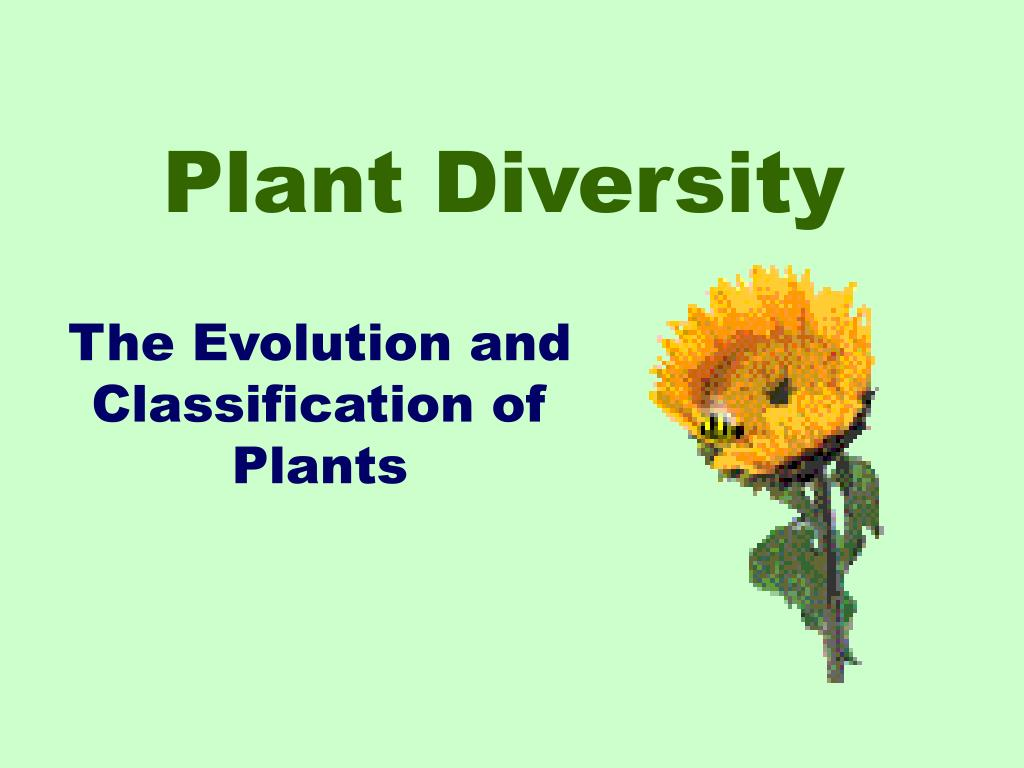 plant diversity l.