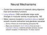 neural mechanisms