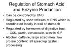 regulation of stomach acid and enzyme production