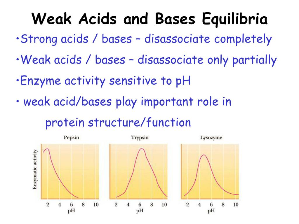 Weak Acids and Bases Equilibria