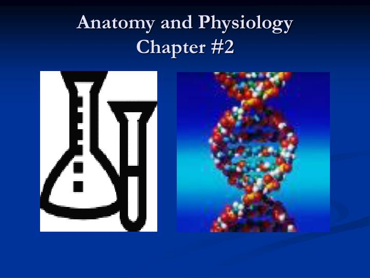 anatomy and physiology chapter 2 n.