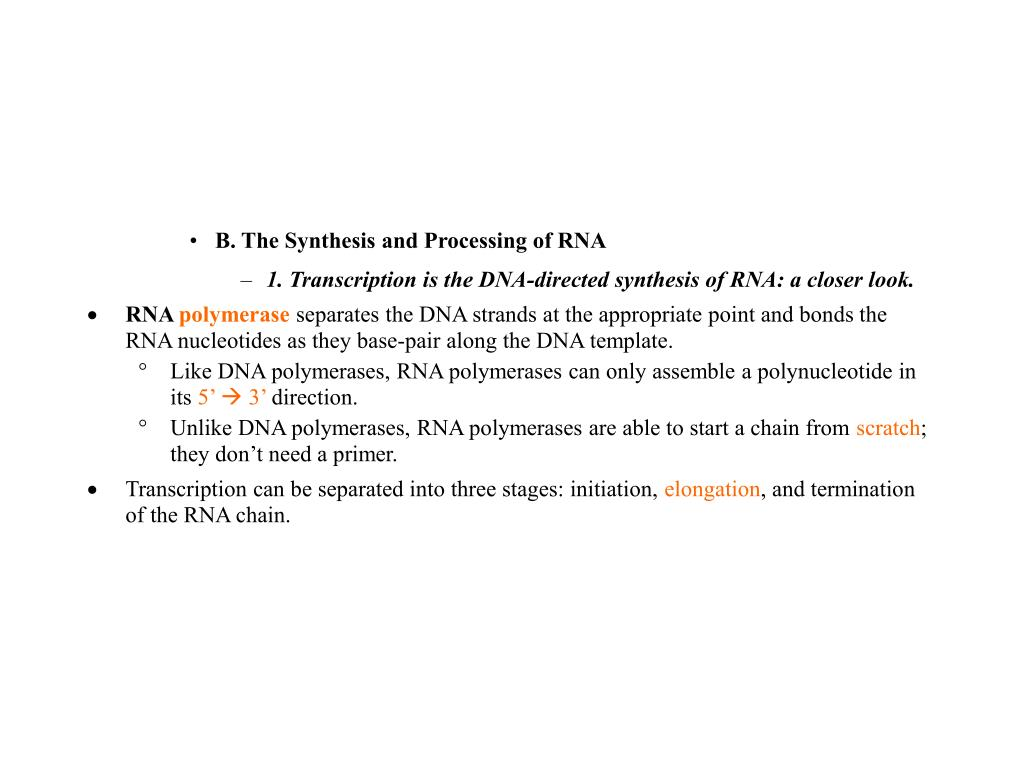 B. The Synthesis and Processing of RNA
