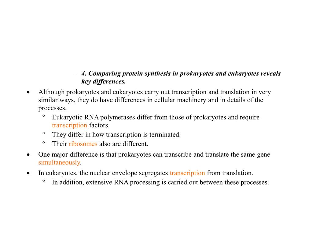 4. Comparing protein synthesis in prokaryotes and eukaryotes reveals key differences.