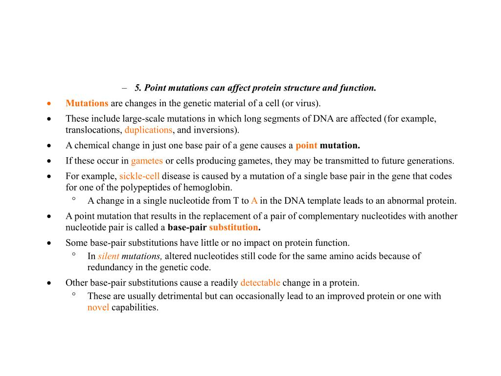 5. Point mutations can affect protein structure and function.