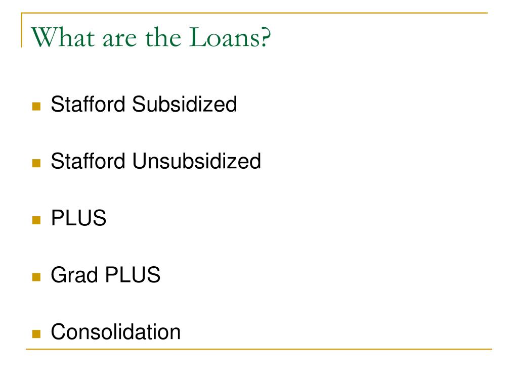 What are the Loans?