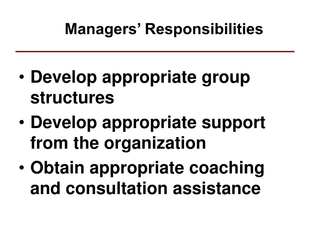 Managers' Responsibilities