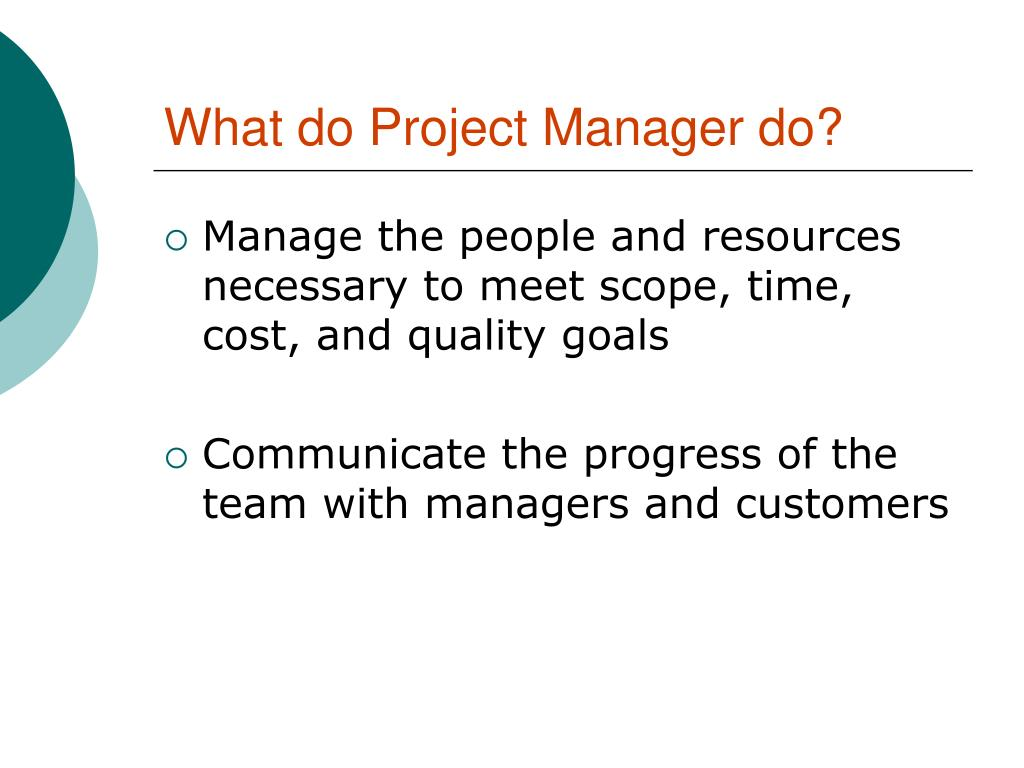 What do Project Manager do?