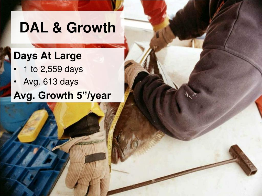 DAL & Growth