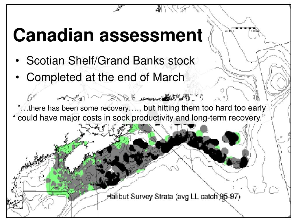 Canadian assessment