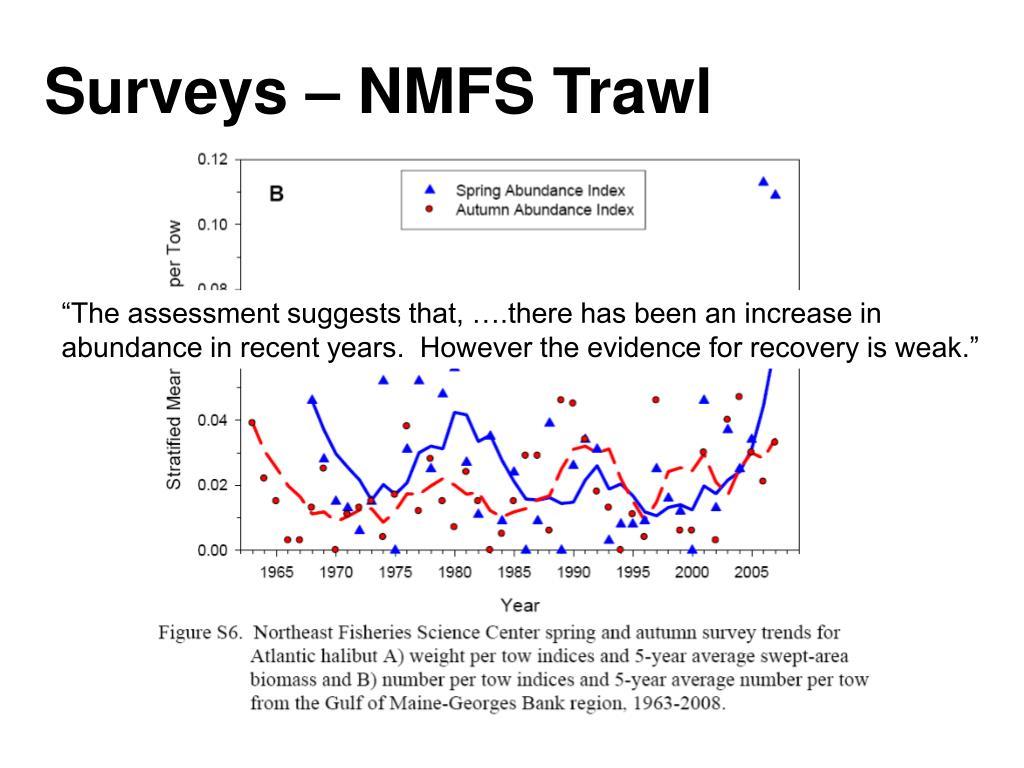 Surveys – NMFS Trawl