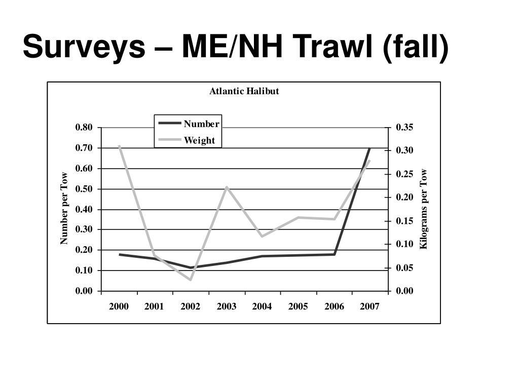 Surveys – ME/NH Trawl (fall)