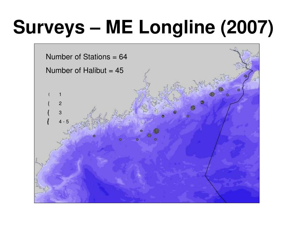 Surveys – ME Longline (2007)