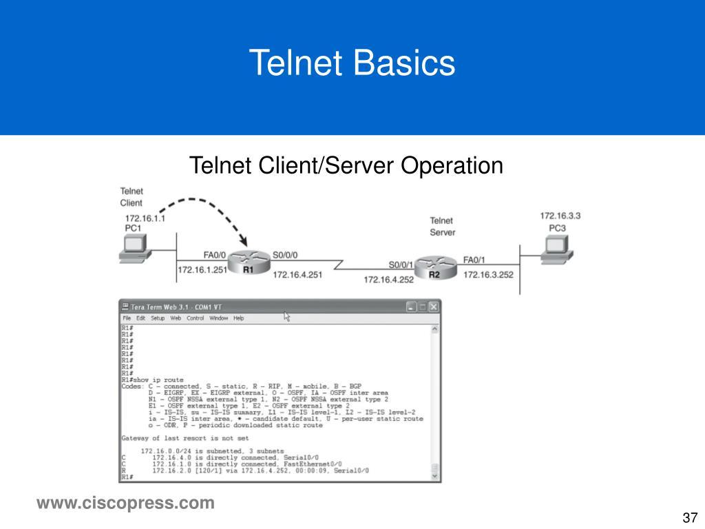 Telnet Basics