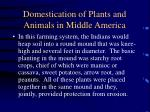 domestication of plants and animals in middle america29
