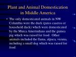 plant and animal domestication in middle america32