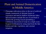 plant and animal domestication in middle america38