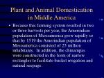 plant and animal domestication in middle america39