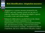 risk identification adaptation measures