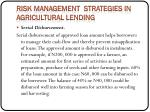 risk management strategies in agricultural lending