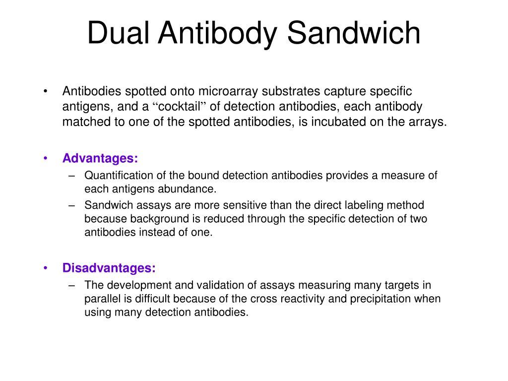 Dual Antibody Sandwich