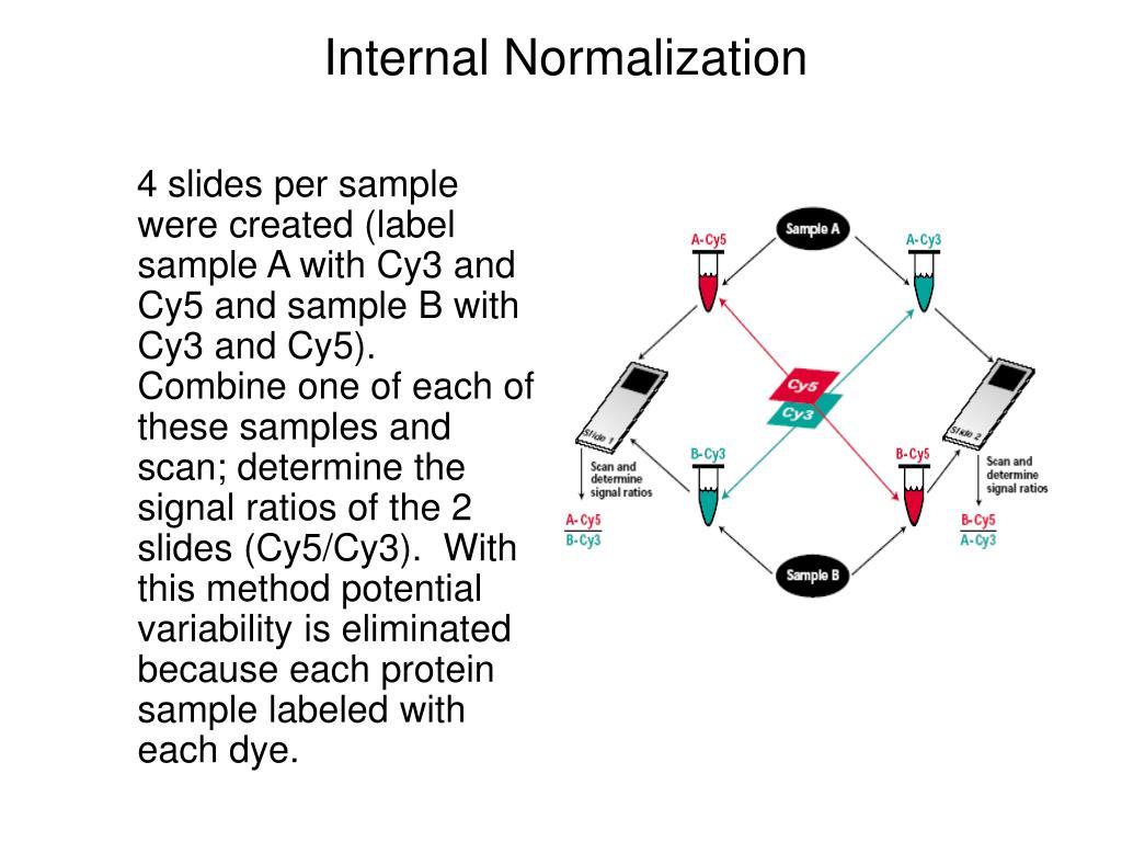 Internal Normalization