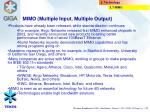 mimo multiple input multiple output