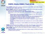 wibro mobile wimax flash ofdm