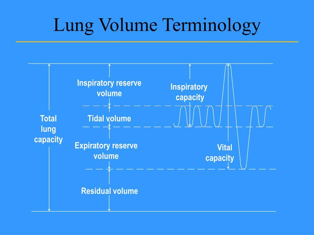 Lung Volume Terminology