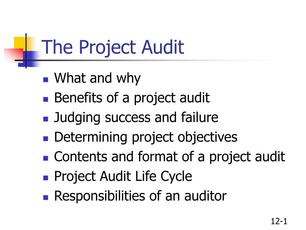 The Project Audit