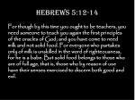 hebrews 5 12 14