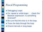 pascal programming13